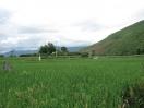 baoshan-fieldwork-149_watermark